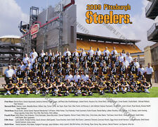 2009 PITTSBURGH STEELERS NFL FOOTBALL TEAM 8X10 PHOTO PICTURE
