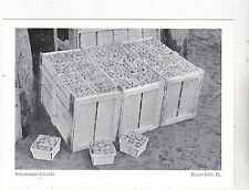 "*Postcard-""Strawberry Crates""  -*Plant City, FL.  (A13-2)"