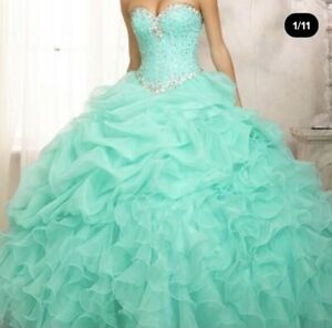 Ball Gown Quinceanera Dress Size 8,10,12