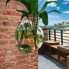 Home Mounted Hanging Bubble Bowl Plant Gold Fish Tank Aquarium Glass Pot Wall
