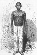 BRAZIL. Mundurucu Indian 1880 old antique vintage print picture