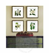Botanical Art Prints set of 4 Unframed White Magnolia Decor Housewarming Gift