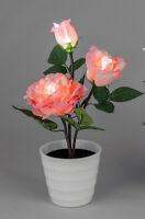 Rose im Topf mit LED Lämpchen Rose Höhe 32cm          NEU