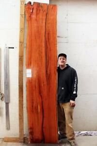 Live Edge Wood Slab Countertop Vanity Natural Wooden Australian Red Gum 6455a9