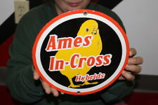 Ames In-Cross Hybrids Chicks Chicken Farm Egg Feed Gas Oil Porcelain Metal Sign