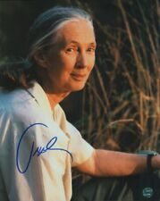 Jane Goodall #2 Autographed Photo Coa Worlds Foremost Expert On Chimpanzees