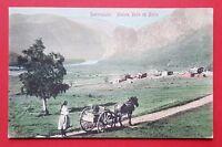 AK NORWEGEN um 1906 Sætersdalen Typen mit Pferdekutsche  ( 25451
