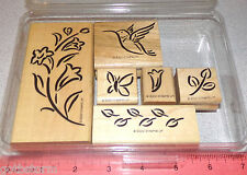 Butterfly Bird Flowers Blossom Leaf by Stampin Up Brushstroke Hummingbird