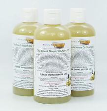 1 botella de líquido árbol de Té & Champú Aceite de Neem 100% natural SLS Free 250 Ml