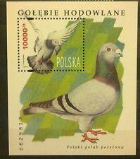 POLAND STAMPS MNH 3Fibl112 Sc3216 Mibl126 block - Breeding pigeons, 1994, **