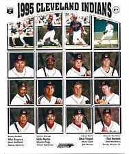 2 1995  Cleveland Indians Amercian League Champions Composite Photo