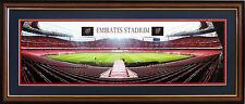 NEW Arsenal FC Emirates Stadium Panoramic