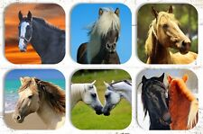 Horse Drink Coasters x 6 Non fading