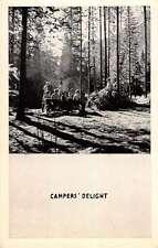 Idaho Falls Treasure Mt Camp Campers Delight Antique Postcard K20286