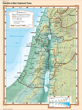Cool Owl Maps Palestine New Testament Times Bible Wall Map 24x32 Laminated