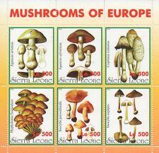 Funghi D'EUROPA SIERRA LEONE 1998 Gomma integra, non linguellato FRANCOBOLLO SHEETLET