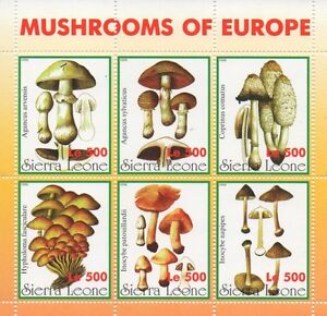MUSHROOMS OF EUROPE SIERRA LEONE 1998 MNH STAMP SHEETLET
