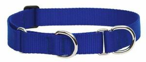 """Lupine Combo Collar 3/4"""" BLUE 10""""-14"""" Martingale NWT"""