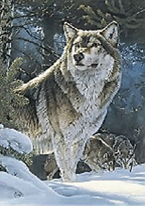 WOLF FAMILY ON SNOW MOUNTAIN  - 3D FLIP PICTURE 300mm X 400mm (NEW)