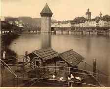 Sommer. Suisse, Luzern  Vintage albumen print Tirage albuminé  20x25  Circ
