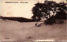 CPA  Ermenonville(Oise) - Mer de Sable  (290970)