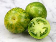 Tomato Green Zebra (Lycopersicon Esculentum) Great Garden Vegetable 50 Seeds