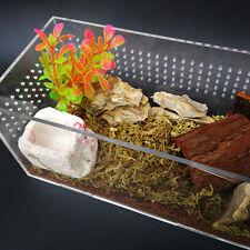 Pet Tortoise Snake Reptile Terrarium Rock Drinking Food Water Bowl Feeder