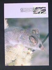 Australia Mk 1992 fauna ratón ratones mouse Pygmy-Possum maximum card mc cm d1719