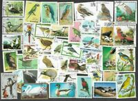 Birds 500 all Different stamps collection-Worldwide birds lovely selection