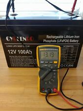 12V 100AH Lithium RV Battery WITH BMS