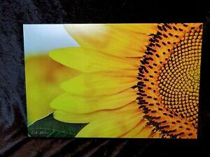 Sunflower Wall Art Print Macro Closeup Original Signed 8x12 Ready to Hang Yellow