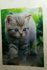 Cats lenticular poster 3D print 3 images in one print