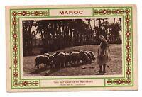 Maroc - cpa - Dans la palmeraie de MARRAKECH   (J379)