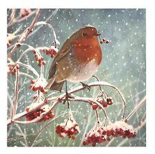 WRAS Charity Christmas Cards - Robin Amongst Berry Bush