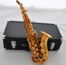 Electrophoresi Gold Curved Soprano Saxophone Pro new Saxofon With Leather Case