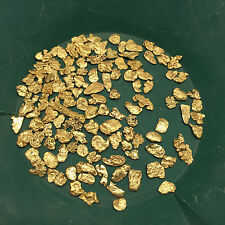 10 Lb NUGGET RESERVE ELITE Gold Panning Paydirt - Guaranteed Unsearched