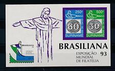 [SU779] Suriname Surinam 1993 Stamp Expo Rio Olho de Boi Souvenir Sheet MNH