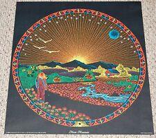 MOON MOUNTAIN Blacklight Poster 1971 Howard Bernstein Psychedelic Art Pomegranat