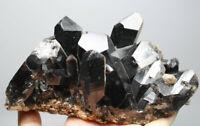 2.29lb Natural Rare Beautiful Black QUARTZ Crystal Cluster Mineral Specimen