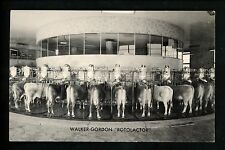New Jersey NJ postcard Plainsboro, Walker Gordon Rotolactor Milk Dairy Farm Cow
