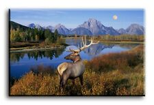 Large Wall Art Canvas Print of Deer Stag Mountain Lake Framed