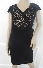 Nwt Adrianna Papell Sleveless Lace  Cocktail Sheath Dress Sz 14 Black Nude $180