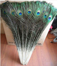 "Wholesale natural 50PCS  peacock feathers eyes 32-36"" Wedding decoration"