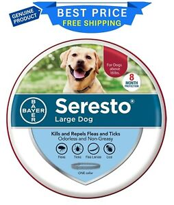 Seresto Flea and Tick Prevention Collar for Large Dogs, 8 Month