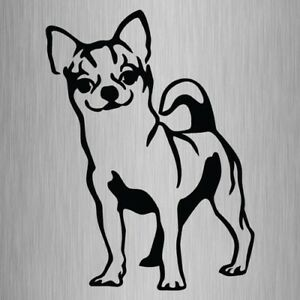 Chihuahua Sticker Vinyl Car Window Decal 175mm x 130mm #3