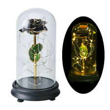 WR Black Rose 24K Gold Dipped Trim Flower In Glass Dome Wedding Anniversary Gift