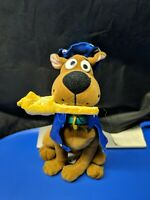 "Cartoon Network SCOOBY-DOO WIZARD 10"" Plush by Toy Network"