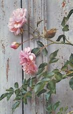 Carl Brenders SUMMER ROSES-WINTER WREN Giclee Canvas #118