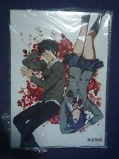 Tokyo Ghoul Plastic Poster Ken x Touka Official super Rare NEW!!