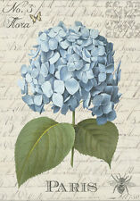 FRENCH COUNTRY FLORAL HYDRANGEA  * QUALITY CANVAS ART PRINT